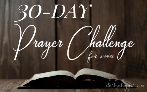 30 Day Prayer Challenge by Darby Dugger